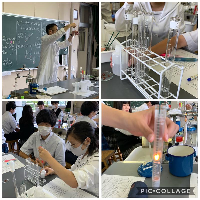 カタラーゼ実験1
